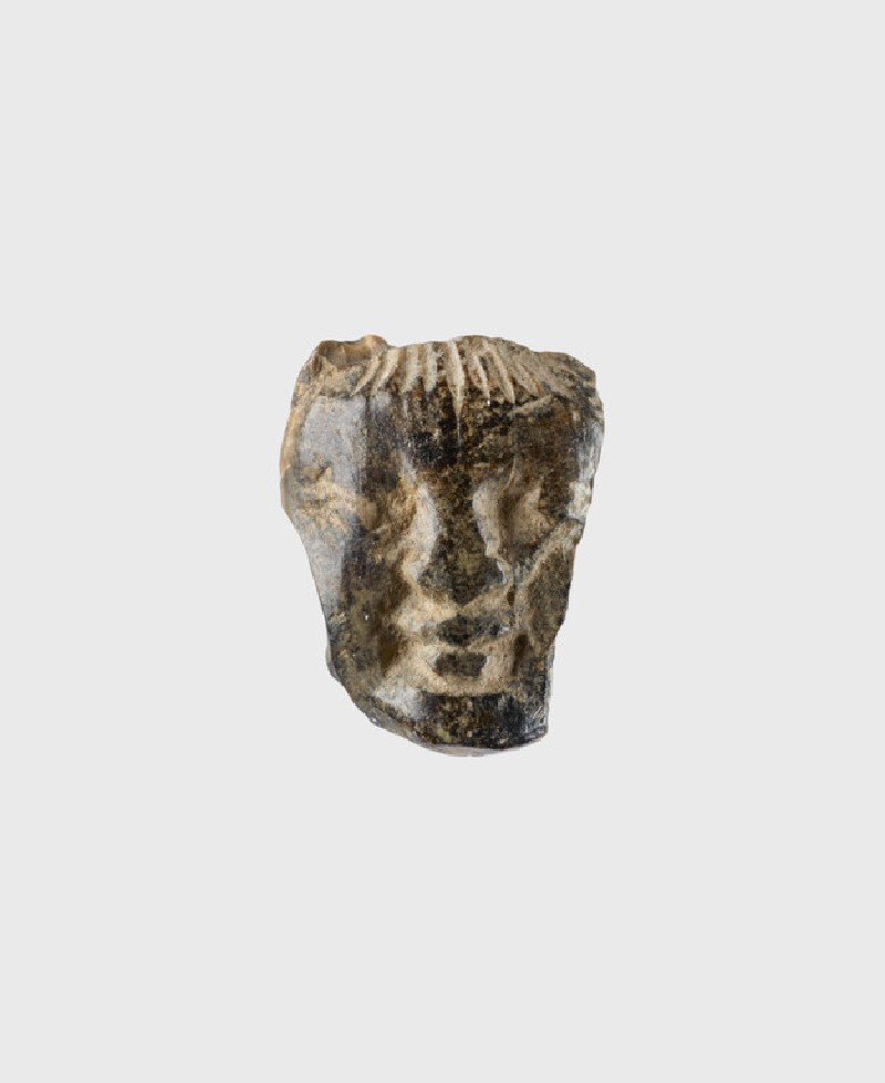 Fragment of a face, probably male