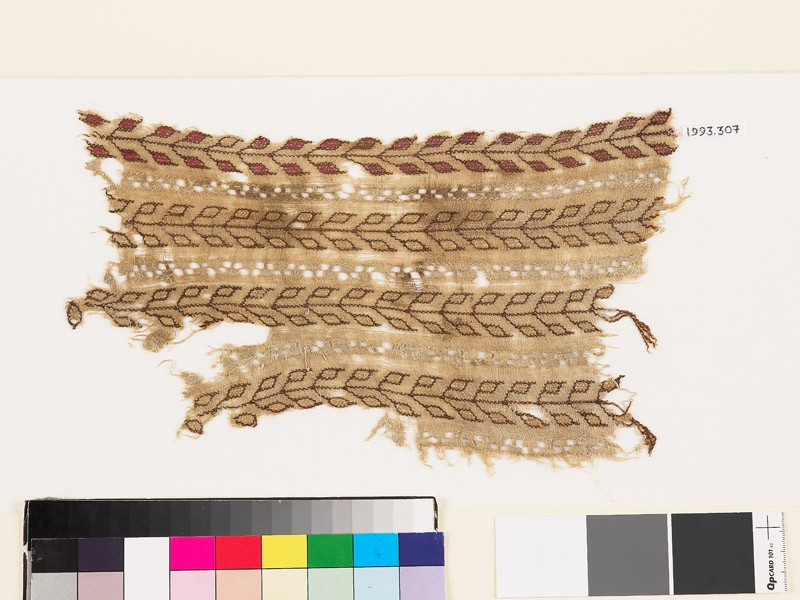 Textile fragment with stems and pairs of leaves (EA1993.307, front            )