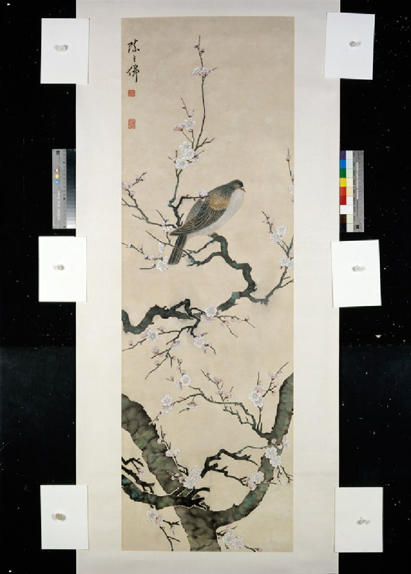 Bird on a branch (EA1995.173, front            )