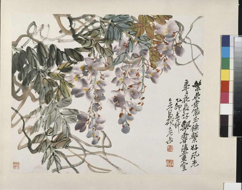 Wisteria (EA1996.79, front, painting only           )