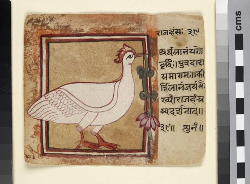 Haṁsa, or goose