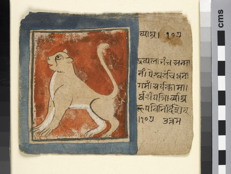 Vyāghra, or lion (EA2012.344.m)
