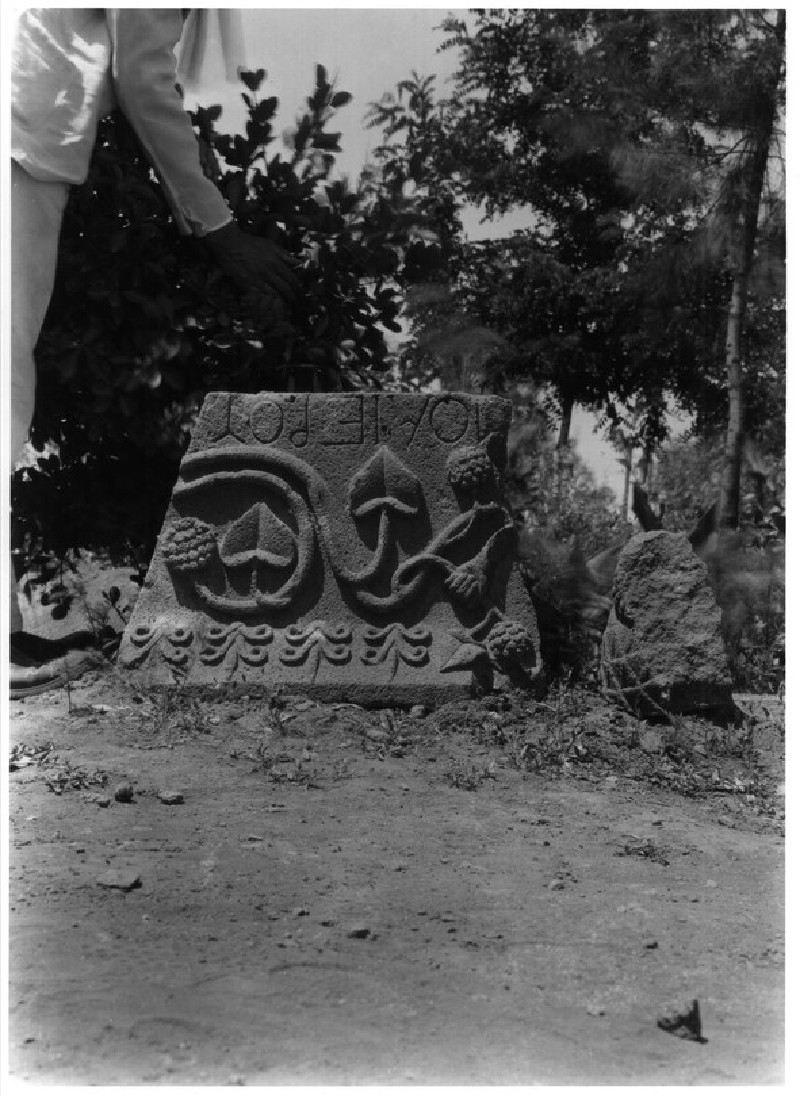 Carved Stone with Vine Motif