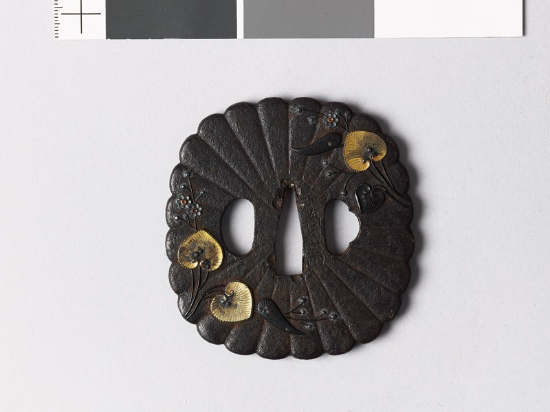 Tsuba with chrysanthemum florets and aoi, or wild ginger (EAX.10066, front           )