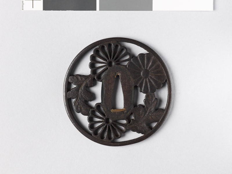 Round tsuba with heraldic chrysanthemum blossoms