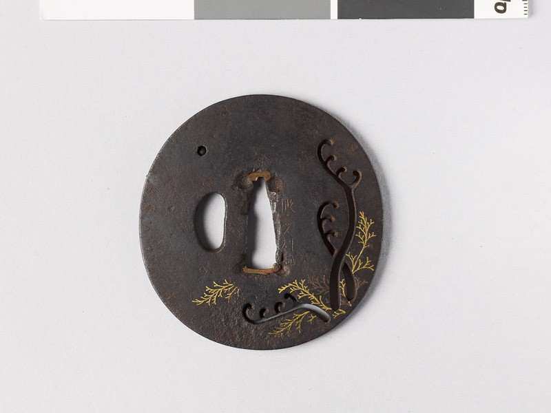 Lenticular tsuba with ferns (front           )