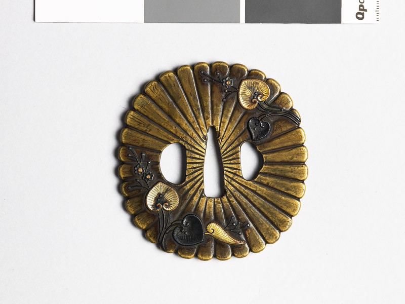 Lobed tsuba with chrysanthemums and aoi, or wild ginger (EAX.10292, front           )
