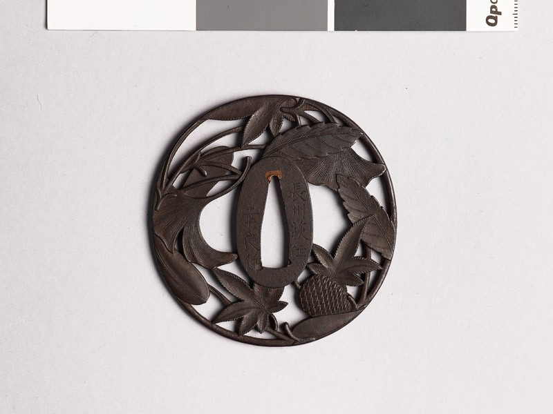 Tsuba with pine cone, needles, and leaves (front           )