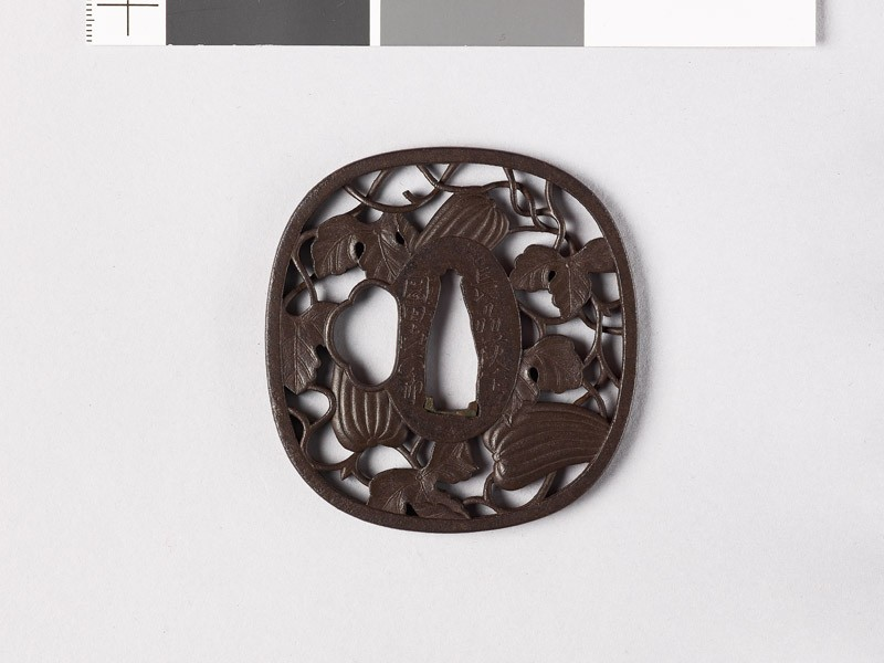 Tsuba with gourd vine (EAX.10370, front           )