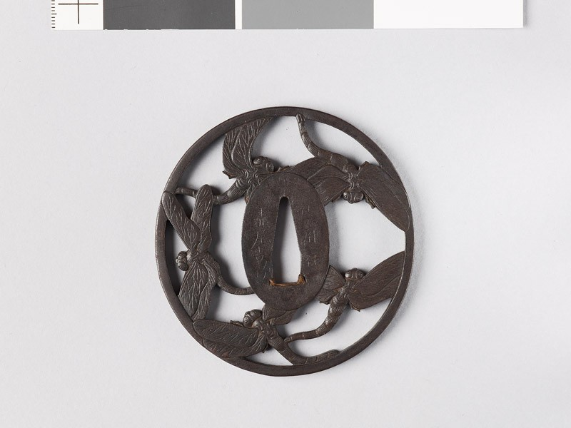 Tsuba with five dragonflies