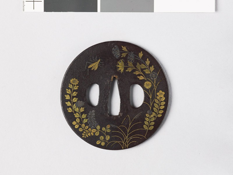 Round tsuba with autumn flowes and insects (EAX.10877, front           )