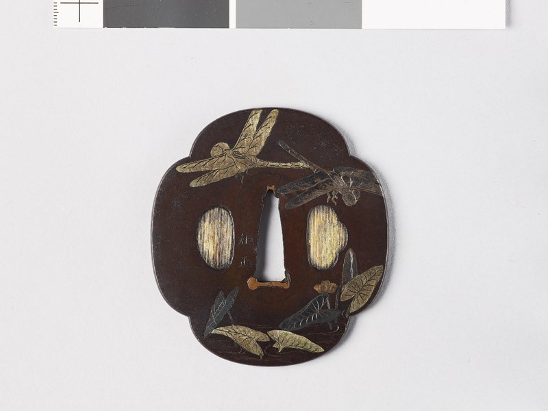 Mokkō-shaped tsuba with dragonflies over a pond (EAX.10878, front           )