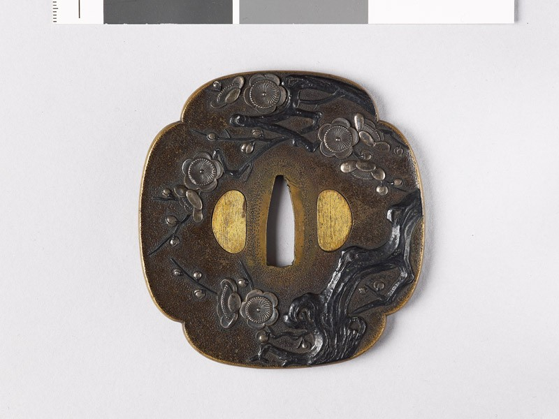 Mokkō-shaped tsuba with blossoming plum tree