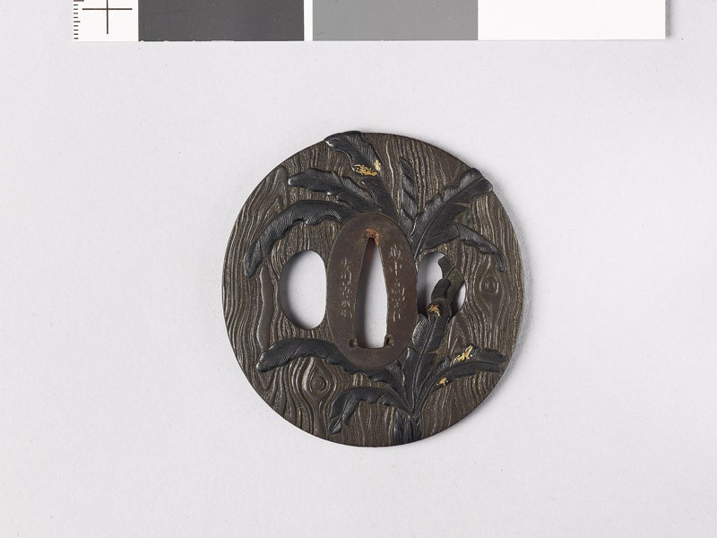 Lenticular tsuba with wood grain decoration and banana trees (front           )