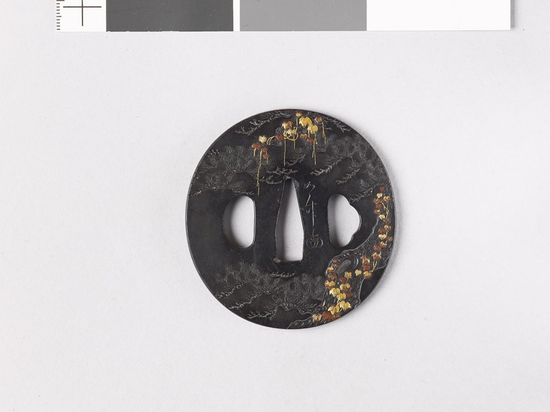 Tsuba with pine tree and creepers