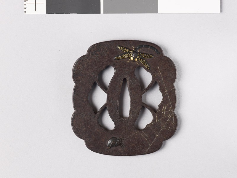 Lobed and mokkō-shaped tsuba with dragonfly, spider, wasp, and webs (front           )