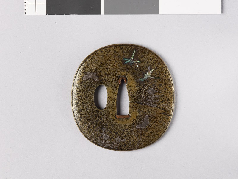 Lenticular tsuba with Platycodon plants, butterflies, and dragonflies (EAX.11140, front           )