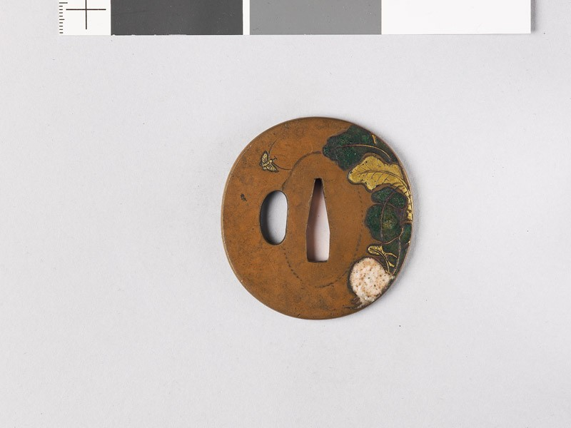 Tsuba with turnip and butterfly