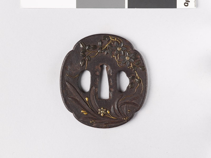 Mokkō-shaped tsuba with plants and a wasp