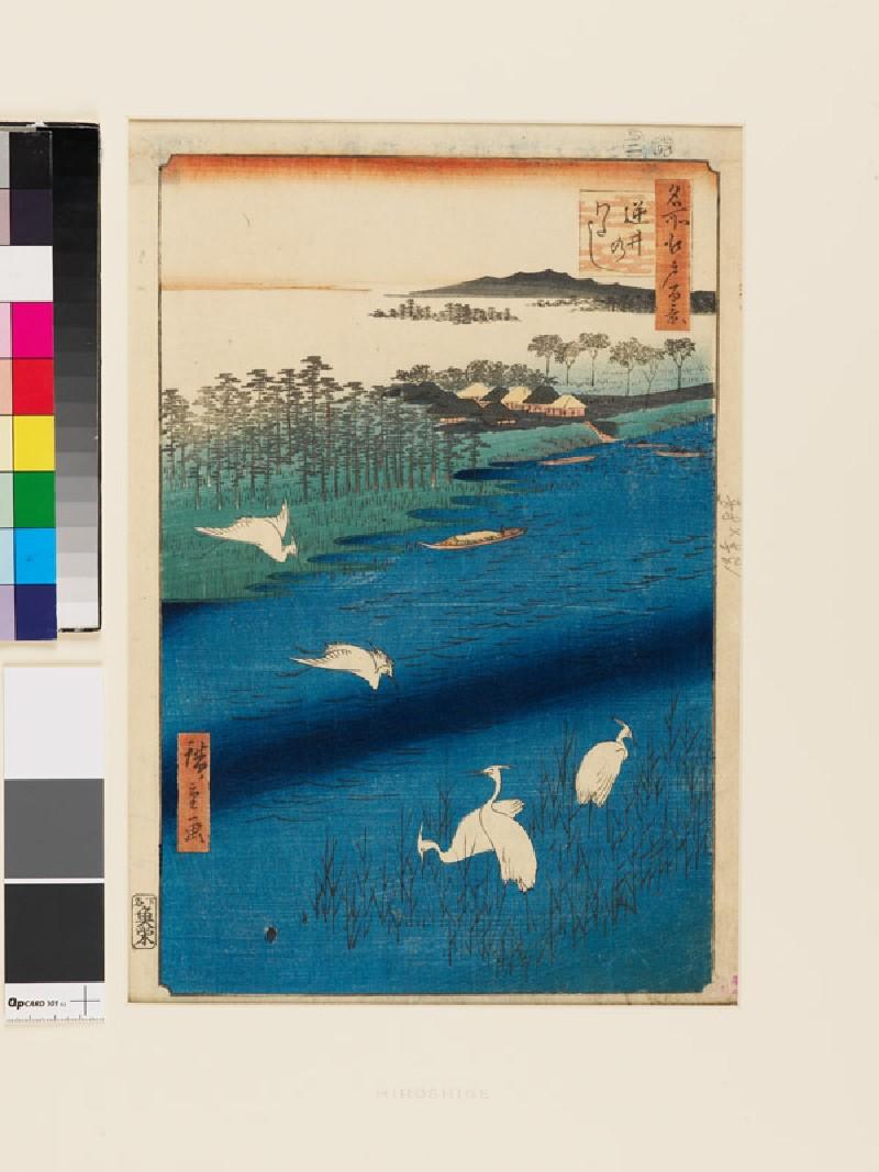 Sakasai Ferry (front          )