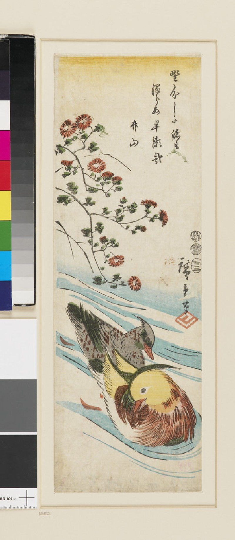 Mandarin ducks in water, flowering spray (EAX.4395, front          )