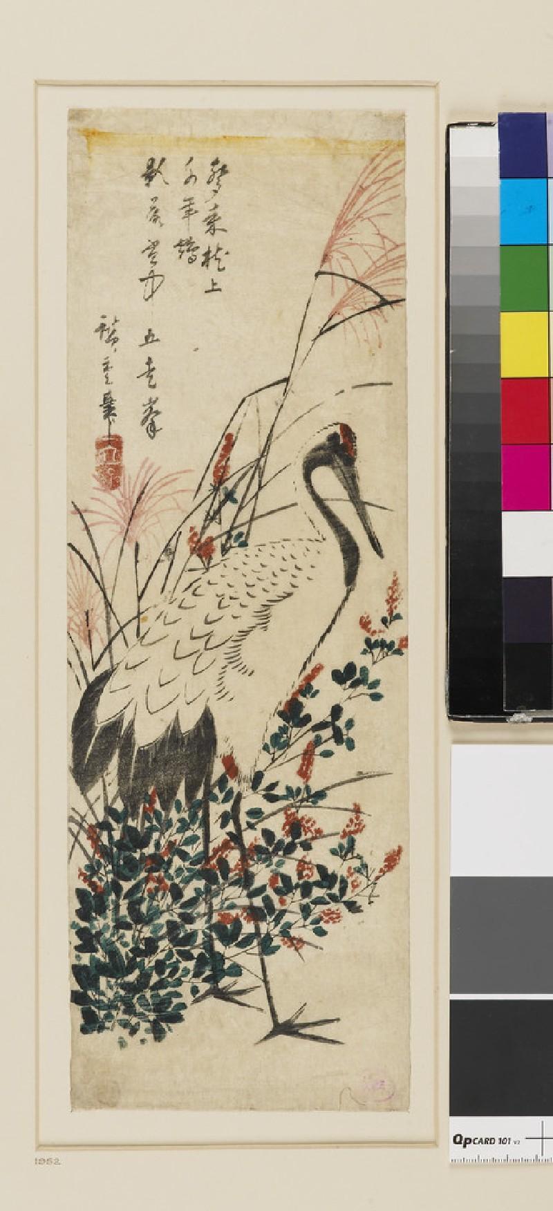 Japanese Pampas Grass, Bush Clover and Red-headed Crane