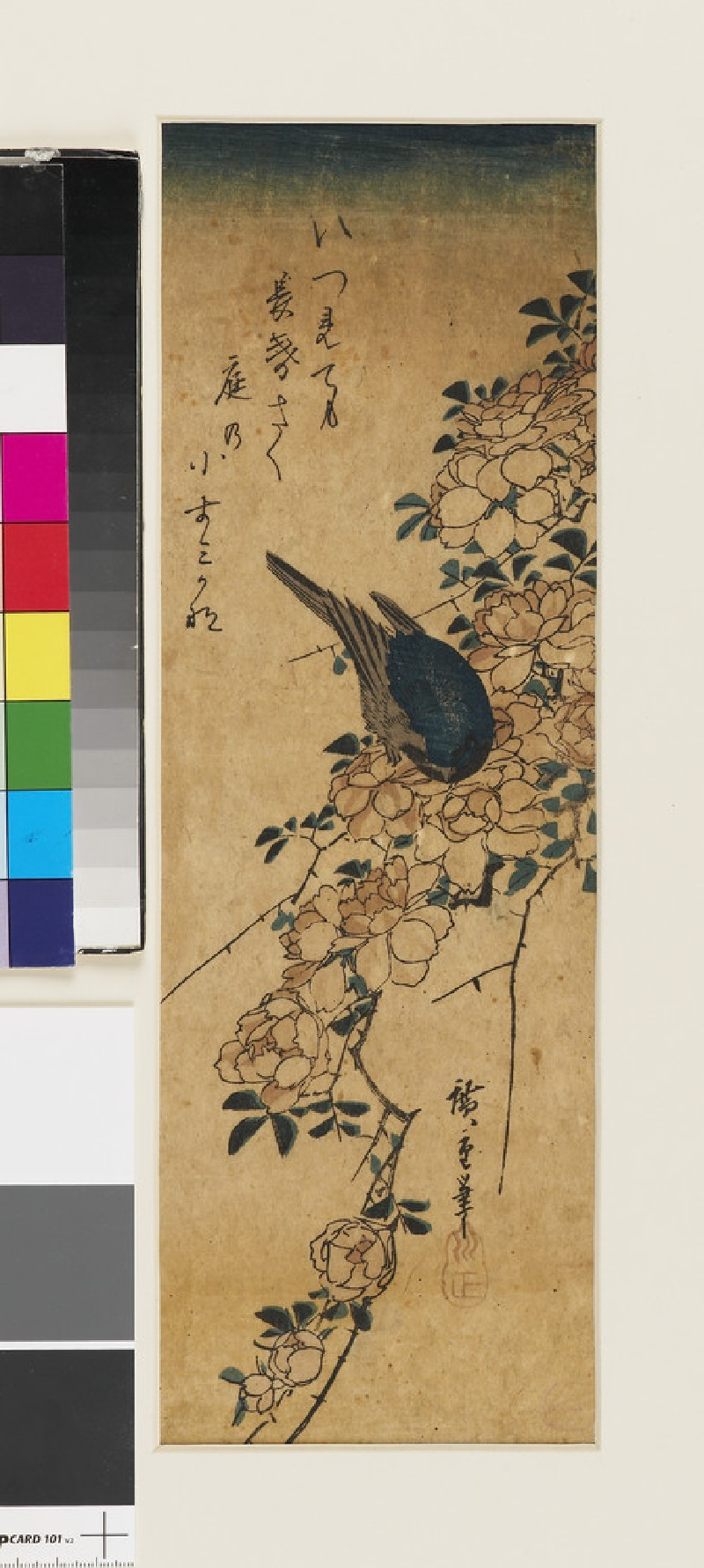 Blue bird, on a spray of wild rose (EAX.4401, front          )