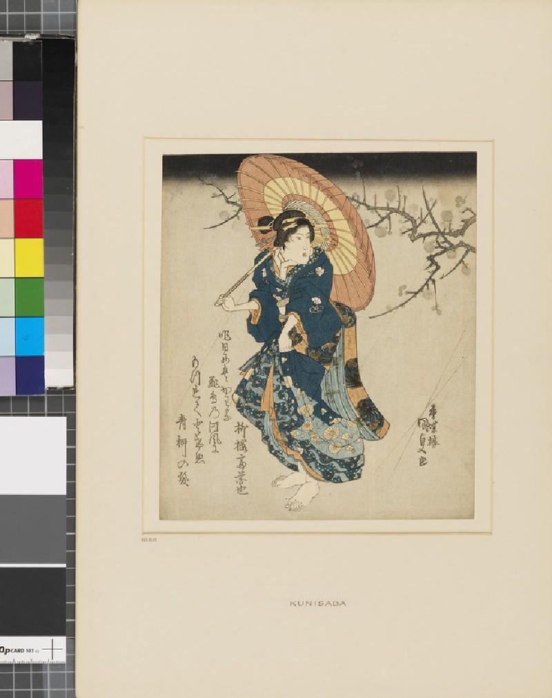 A woman with an umbrella under a flowering plum branch