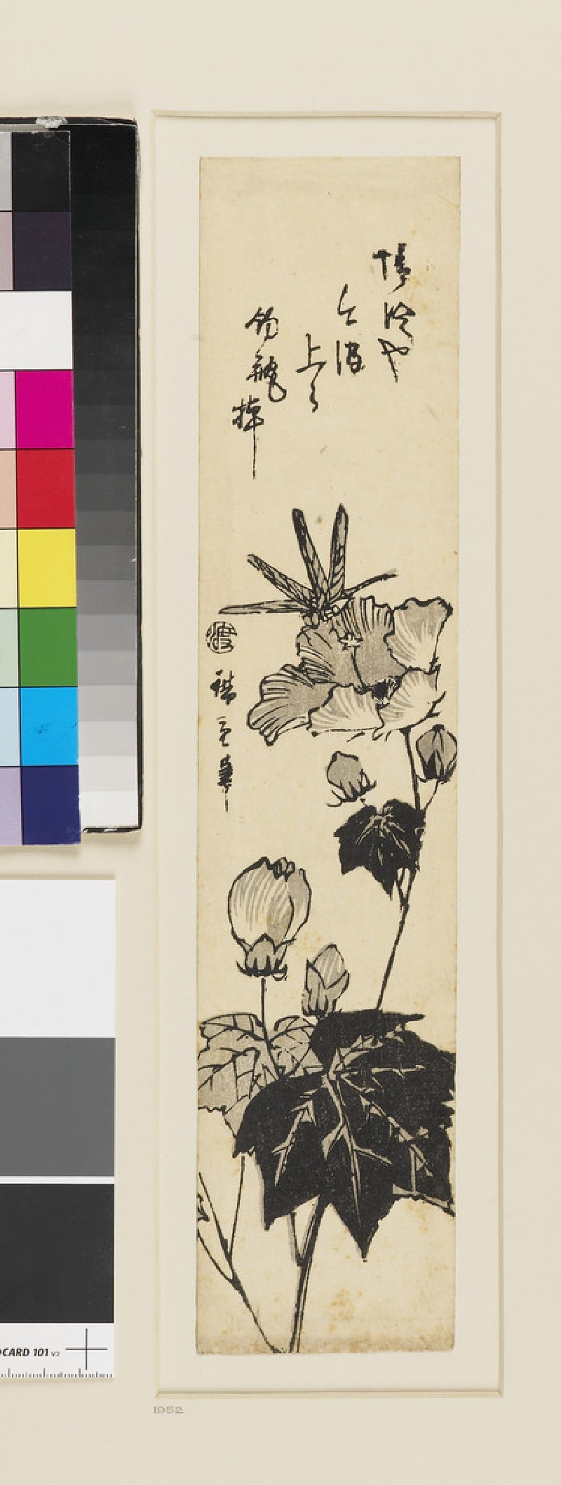 Dragonfly and hibiscus (EAX.4693, front          )