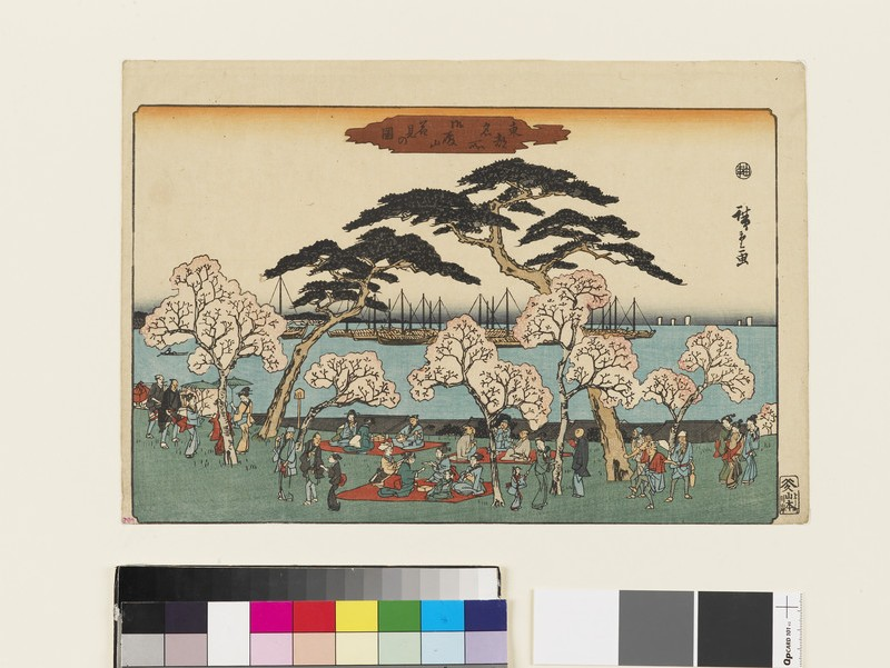 View of Cherry Blossom-Viewing at Gotenyama (EAX.4709, front          )