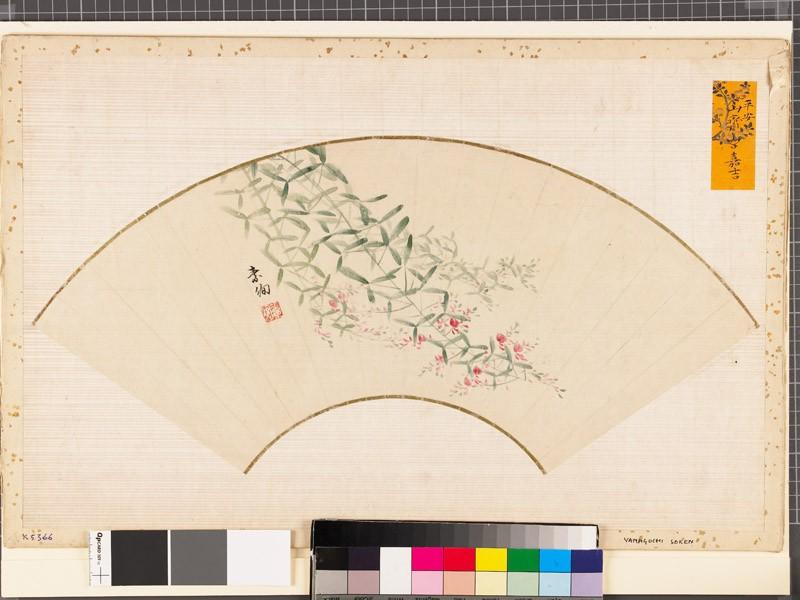Flowering pink bush clover, or hagi