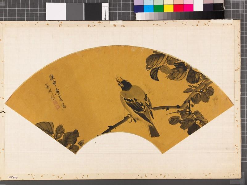 Bird on a branch (EAX.5404, front          )