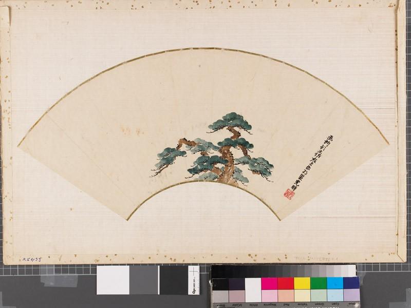 Pine tree (front          )