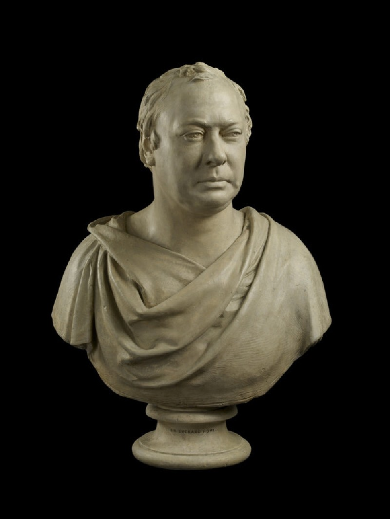 Bust of Sir Everard Home Bt (1756-1832) (WA1842.128)
