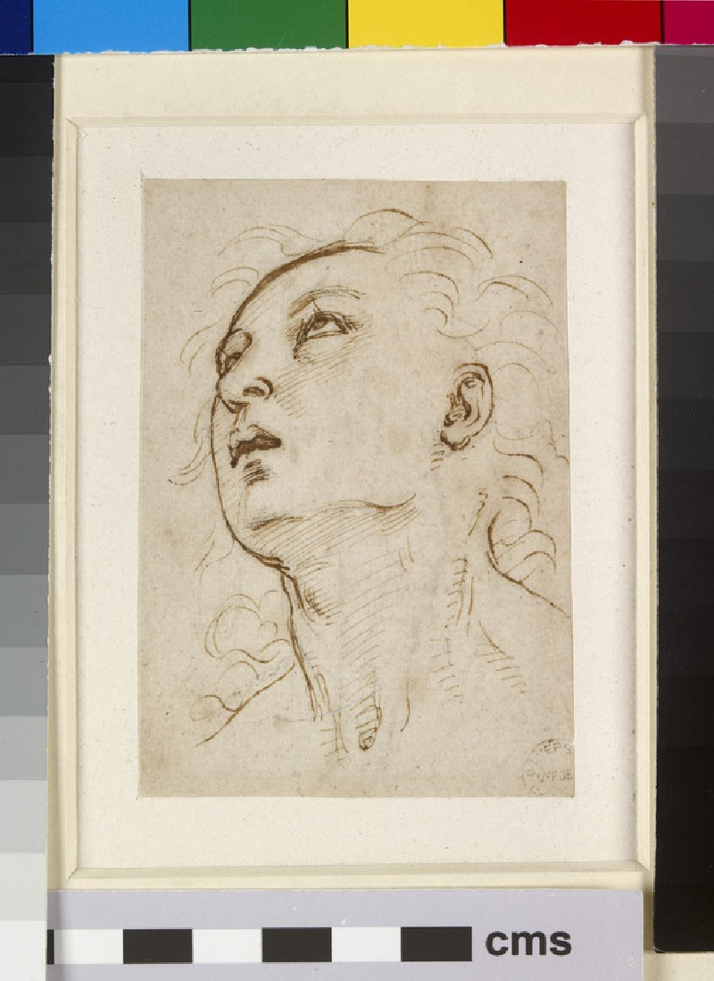 Recto: Head of a young Man gazing upwards<br />Verso: Sketch of a pair of Legs
