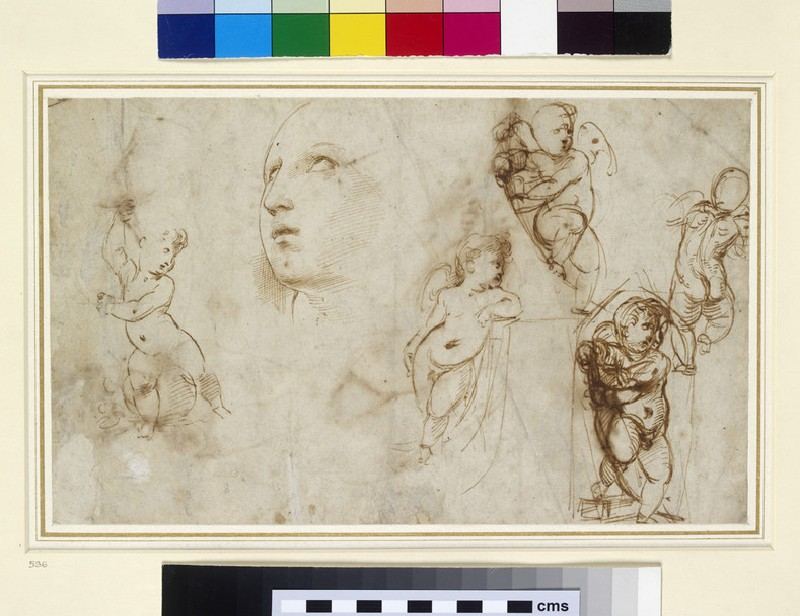 Recto: A female head for Borghese-Beckford St Catherine and various putti 