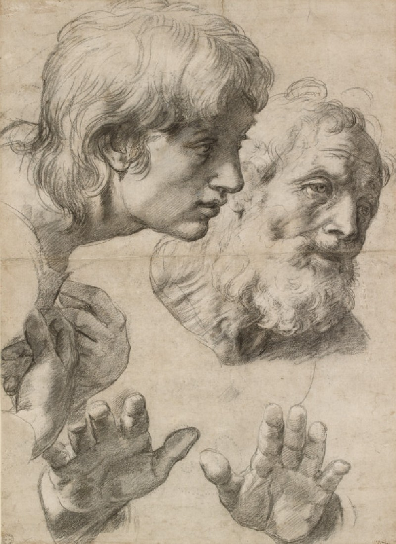 Studies of the heads of two apostles and of their hands (WA1846.209)