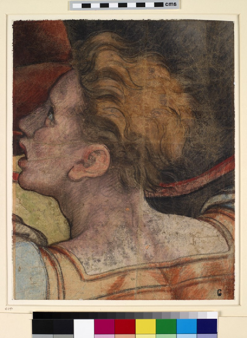 Head of a young Man directed to left, looking upwards