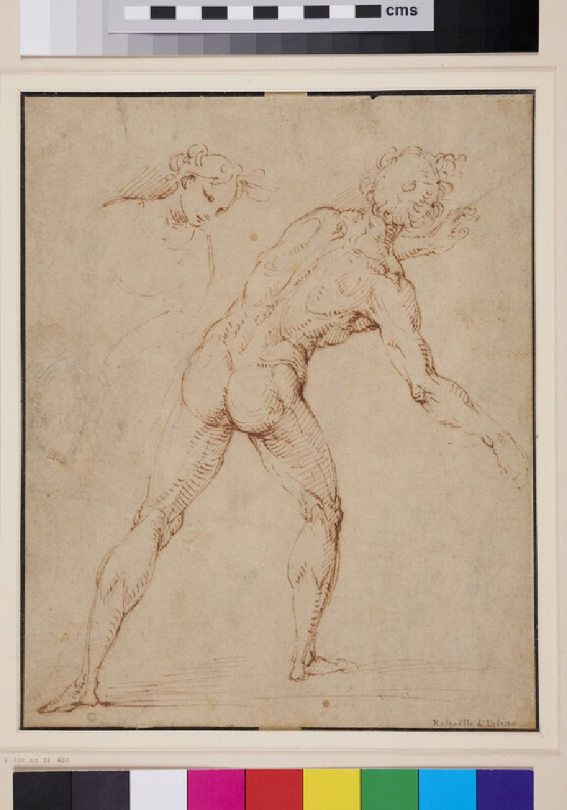 Recto: Back View of a nude Man