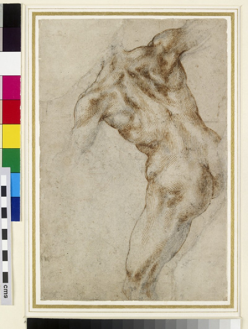 Recto: Nude male Torso (possibly a study for the Battle of Cascina)<br />Verso: Two male Nudes and a Horse