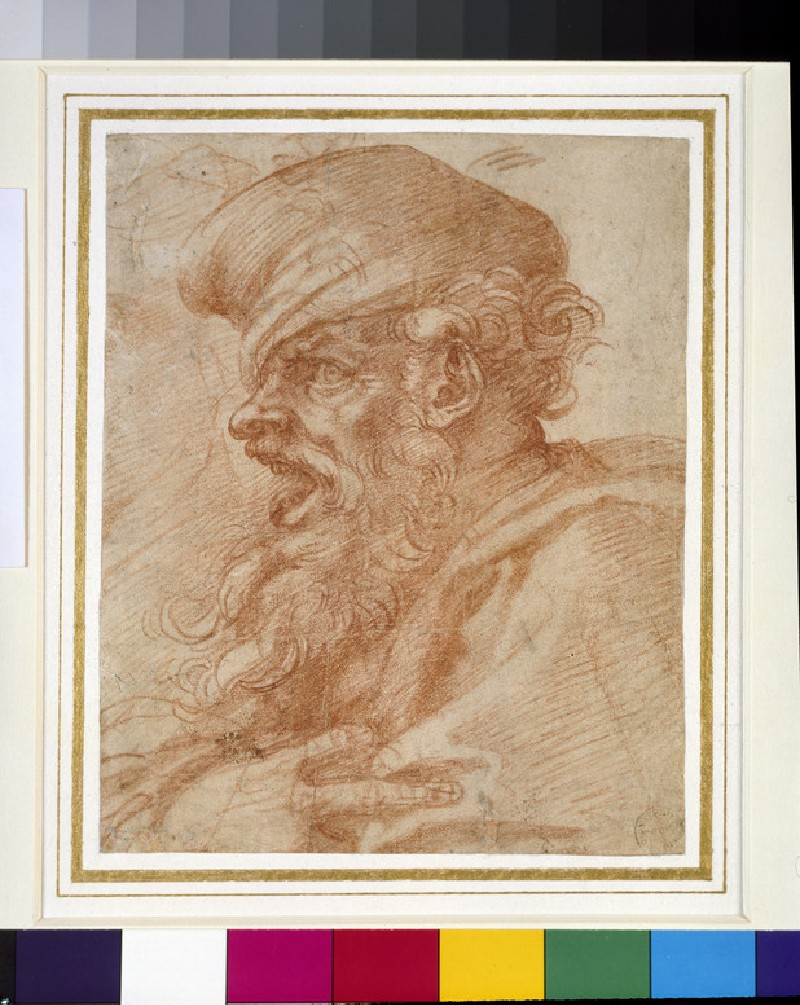 Recto: Head of a Bearded Man shouting   Verso: Various Studies