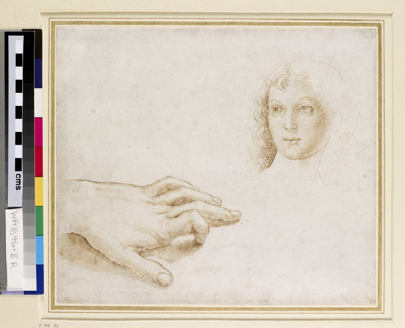 Studies of a Head and a Hand (WA1846.8)