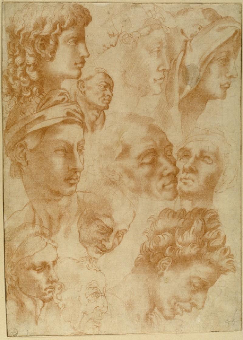 Twelve Studies of Heads