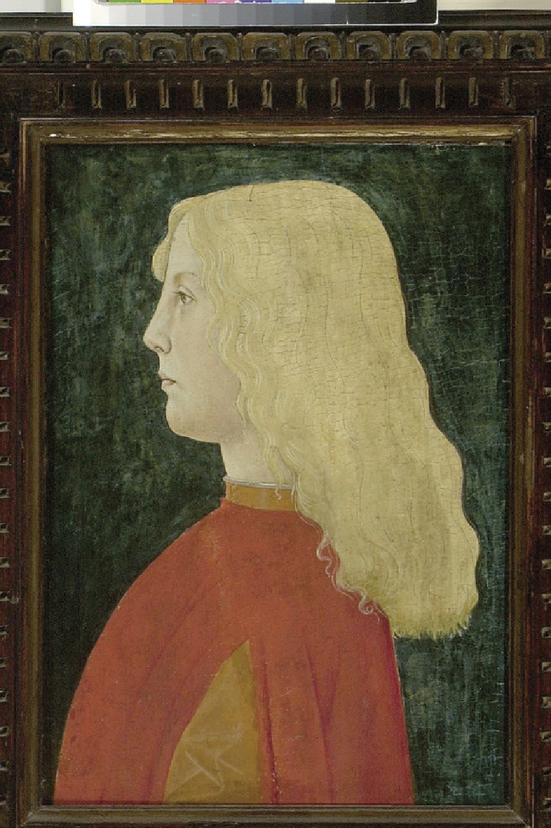 Portrait of a Boy (WA1850.17)