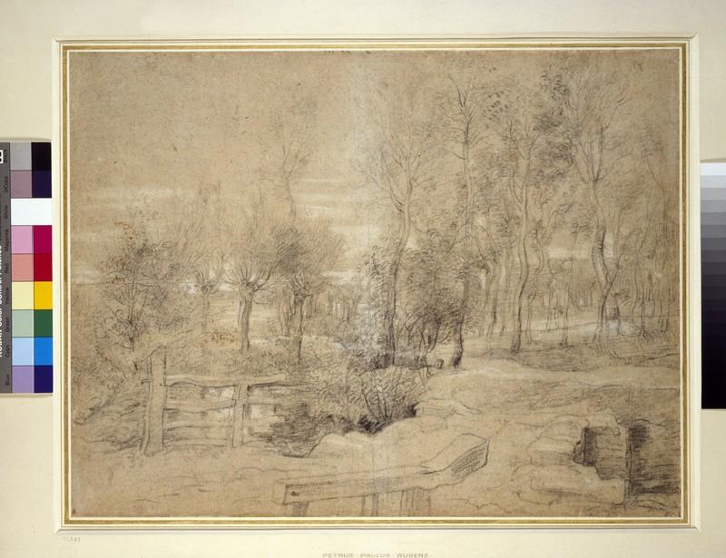 Woodland Scene (WA1855.122)