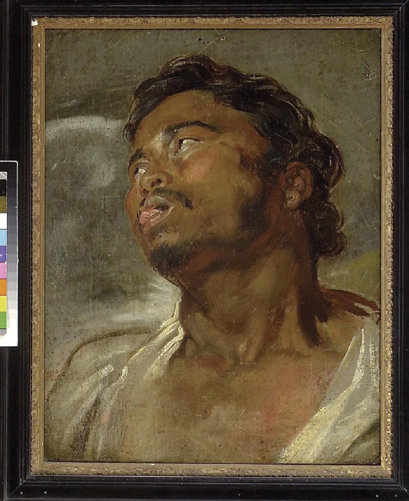 Head of a black man (WA1855.190)