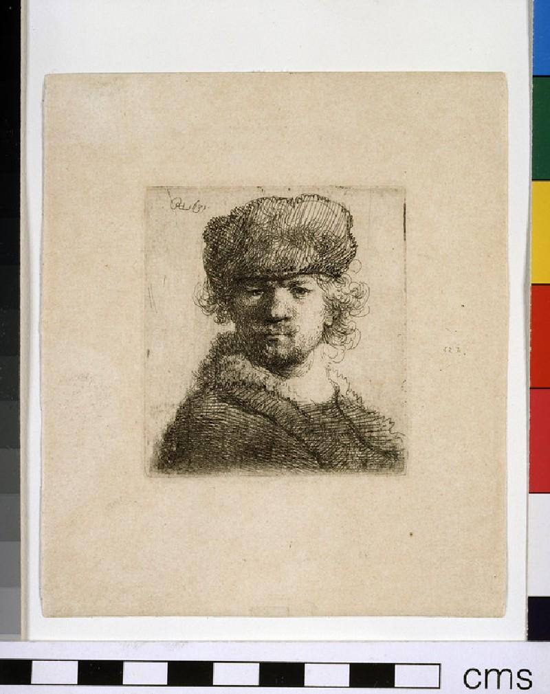 Self-portrait in heavy fur Cap: bust (WA1855.312)