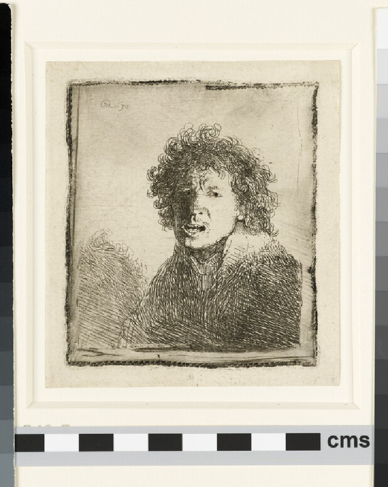 Self-portrait open-mouthed, as if shouting: bust (WA1855.319)