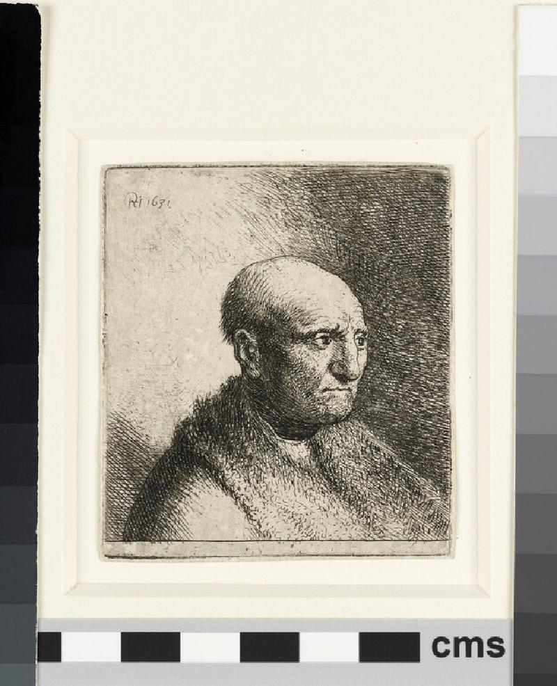 Bald man in a fur cloak: bust