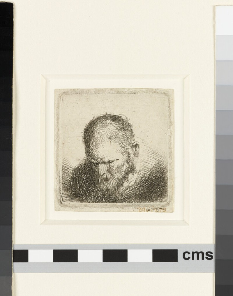 Bearded man looking down, head only